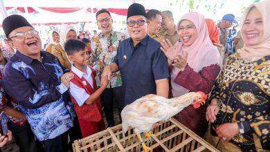 Kepala Dinas Pangan dan Pertanian (Dispangtan) Kota Bandung, Gin Gin Ginanjar menyebut program pemeliharaan anak ayam dan bibit cabai oleh para siswa SD dan SMP ini sangat luar biasa