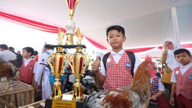 Kiki Ilham Fahrezi, siswa kelas 5 SD 102 Cikudayasa sangat gembira bisa mewakili sekolahnya sebagai peserta terbaik program pemeliharaan anak ayam.